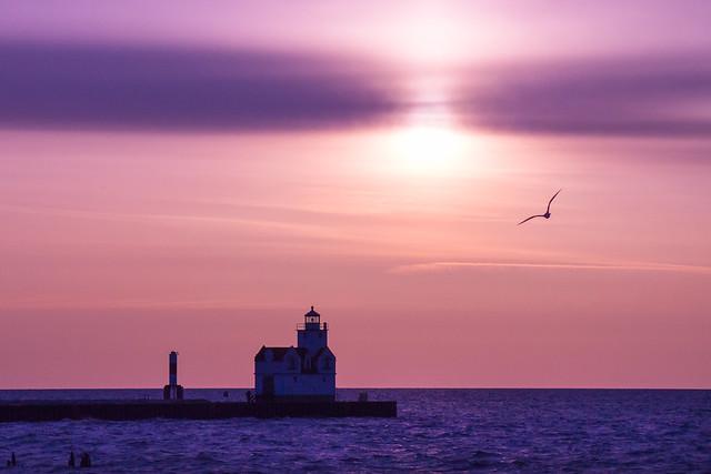 Purple, Lighthouse, Sea Gull, Sunrise, Lake Michigan