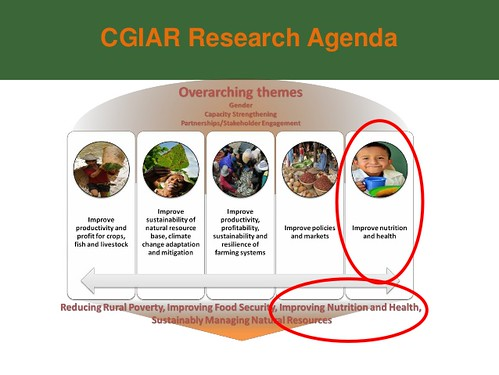CGIAR Research Program on Agriculture for Nutrition and Health within CGIAR