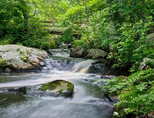 cool summer stream by enjoiskate8 via I {heart} Rhody