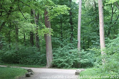 Amalienburg Wald