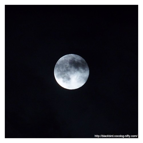 Blue Moon #02