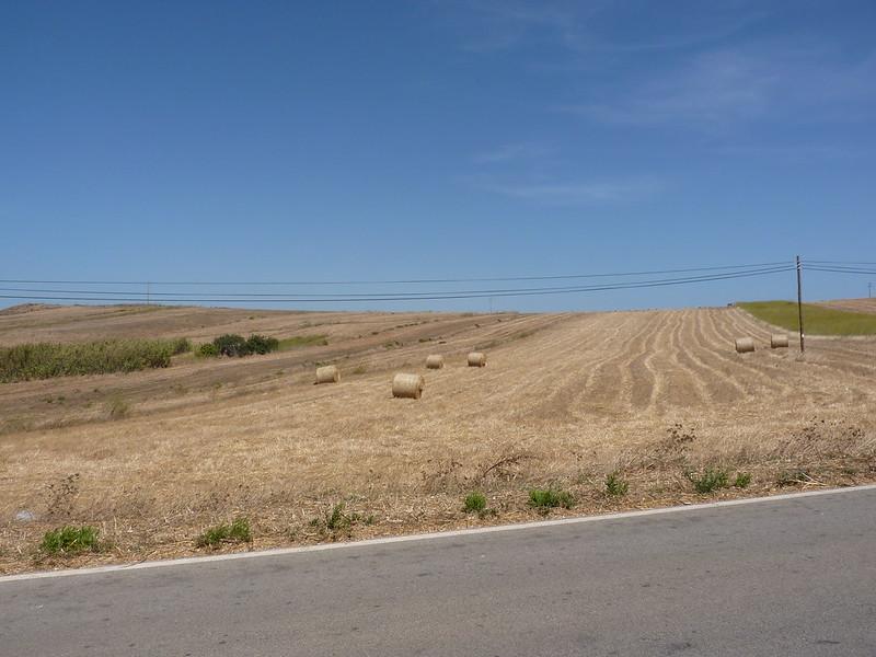 Sudoeste Alentejano e Costa Vicentina 08'13