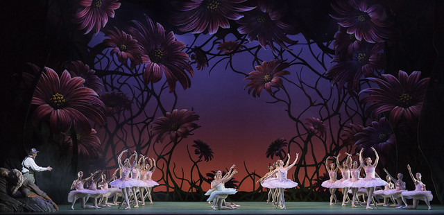 Members of The Royal Ballet in Don Quixote © ROH / Johan Persson 2013