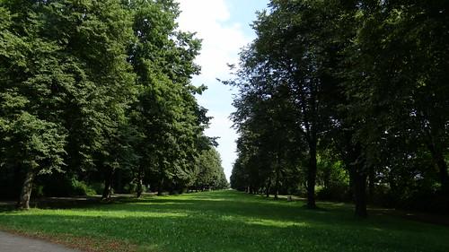 Die englische Regierung, die Königlich Geographische Gesellschaft zu London  und der Grosser Garten in Dresden 0232