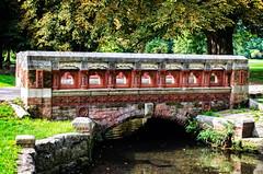 A Bridge in Beddington Park