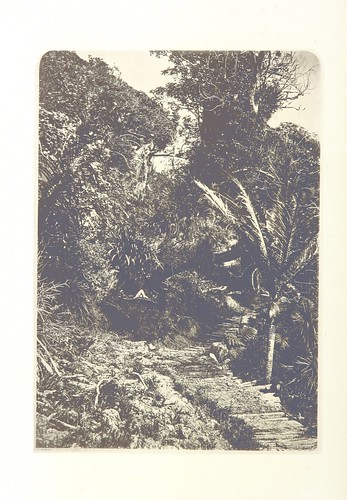 Image taken from:  Title: The Wonderland of the A...