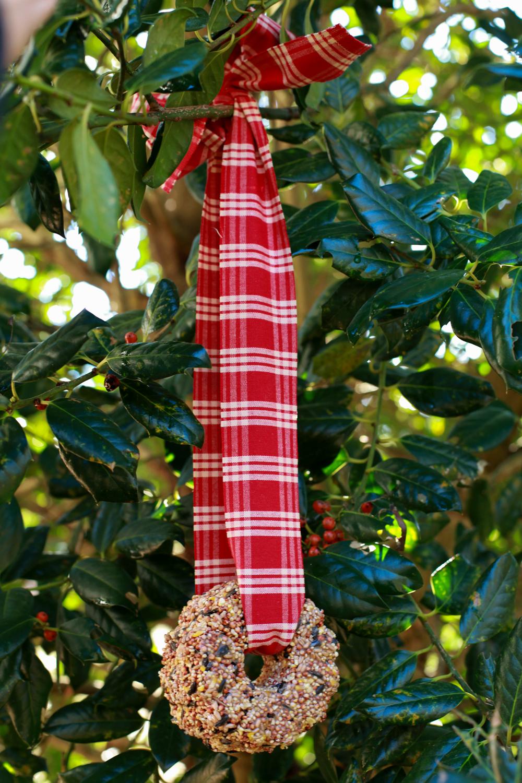 birdseed wreath-2