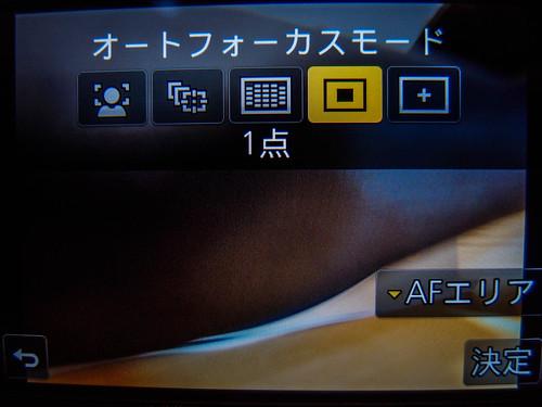 PC150209.jpg