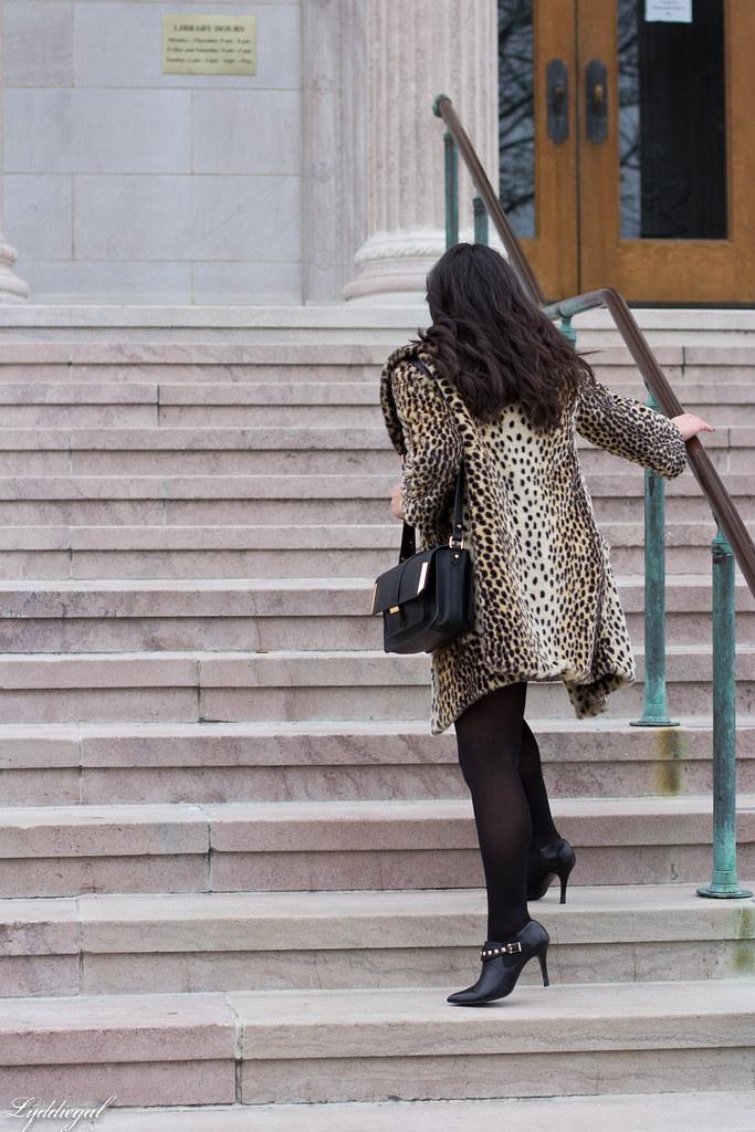 leopard and tweed-2.jpg