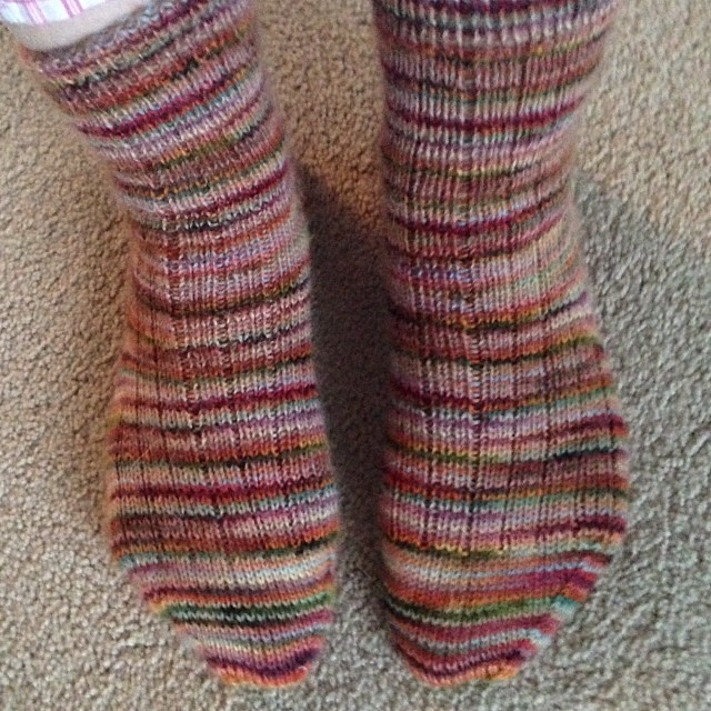 Finished just in time for the big ice storm! I know you all up north are laughing at us down here!! #aniceribbedsock #knitting #socks #mistialpaca