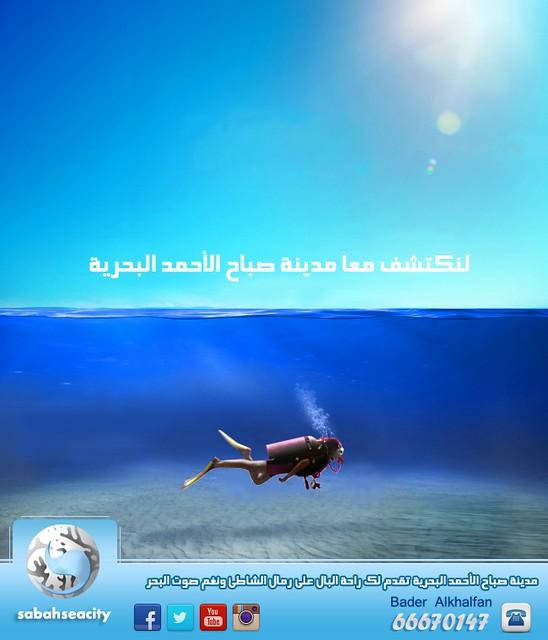 12547562443_2aae245a3d_z.jpg
