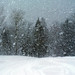 Snowstorm-21