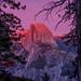 Sunset Alpenglow on Half Dome by Jeffrey Sullivan