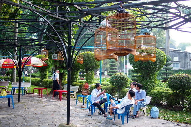 songbirds in a park, Ho Chi Minh City (Saigon), Vietnam