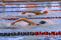 outdoor recreation(0.0), breaststroke(0.0), individual sports(1.0), swimming(1.0), sports(1.0), recreation(1.0), swimmer(1.0), water sport(1.0), medley swimming(1.0), freestyle swimming(1.0),