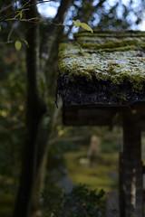 20150118 Kyoto 9