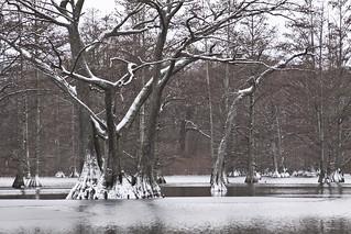 Rosenbaum Lake