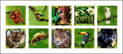 free Secrets of the Amazon slot game symbols