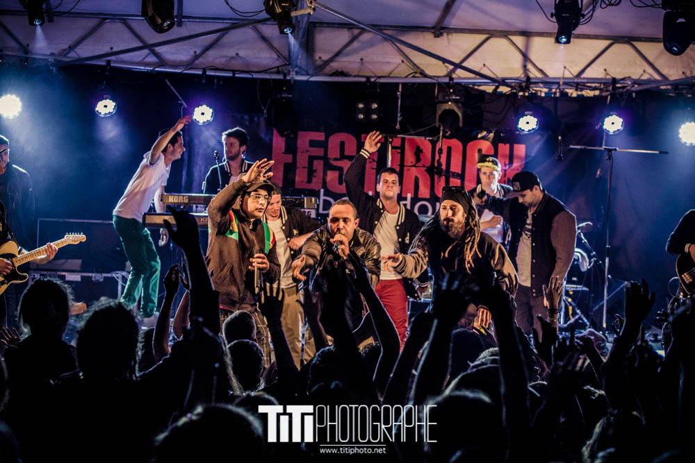 Feuille de roots-Les Adrets-2016-Sylvain SABARD