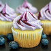 Lime and Blueberry Cupcake