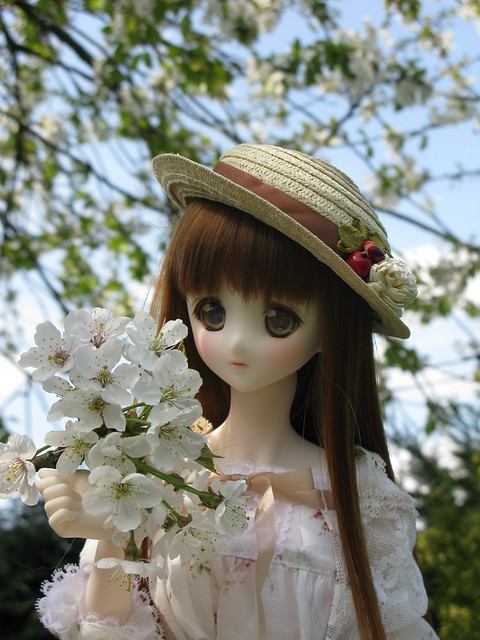 Spring Yui