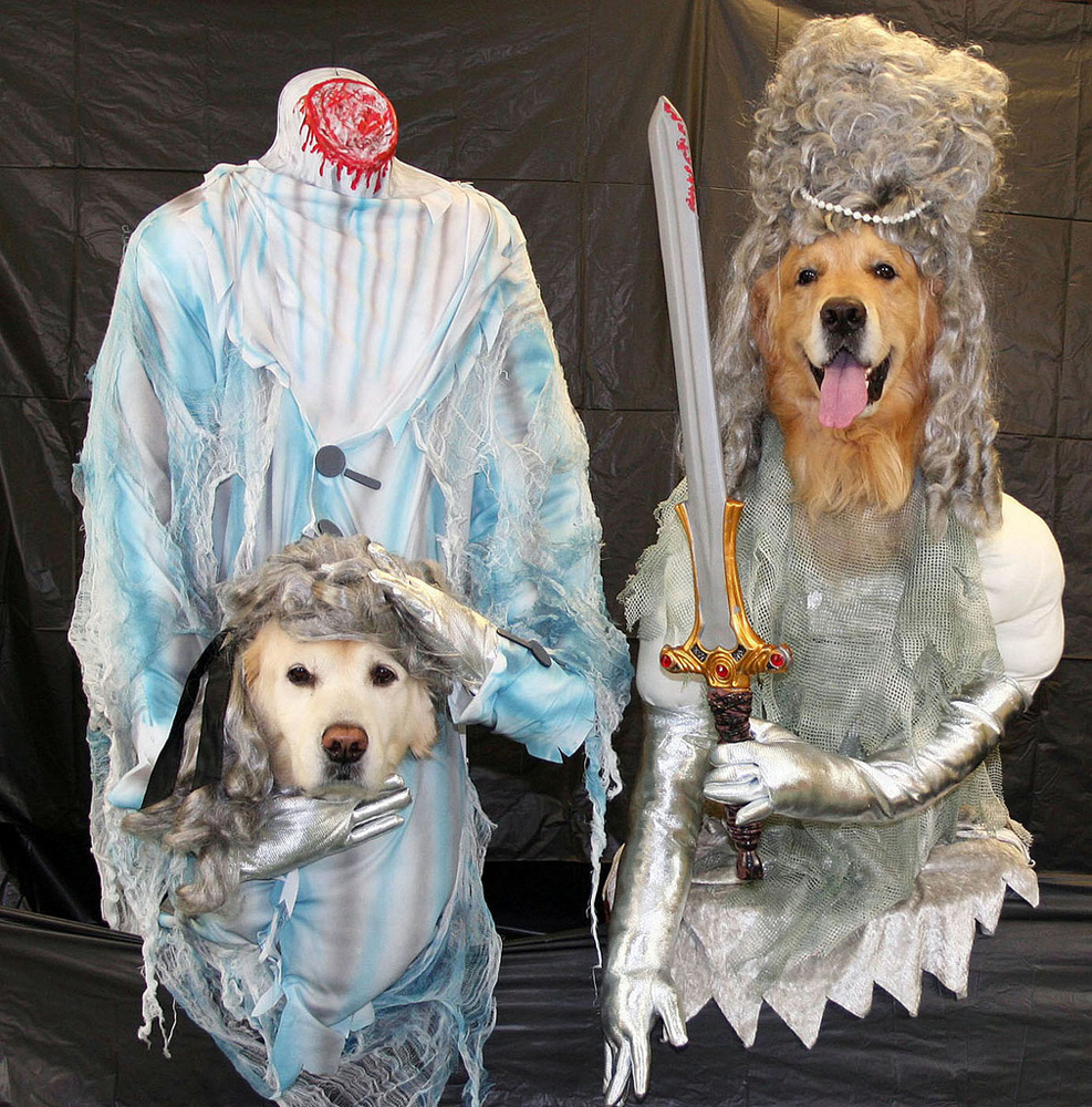 Headless Ghost Dogs