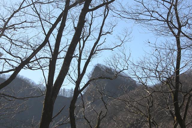 20130408_荒船山_0010