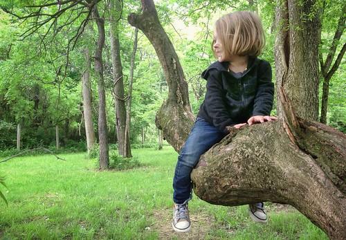 lil tree hugger