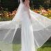 Bride With Veil -  Half Moon Bay
