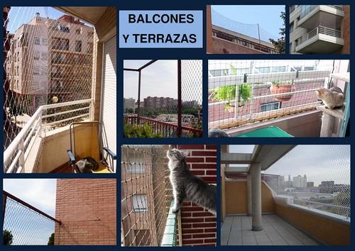 Proteccion terrazas para gatos materiales de - Proteccion para terrazas ...