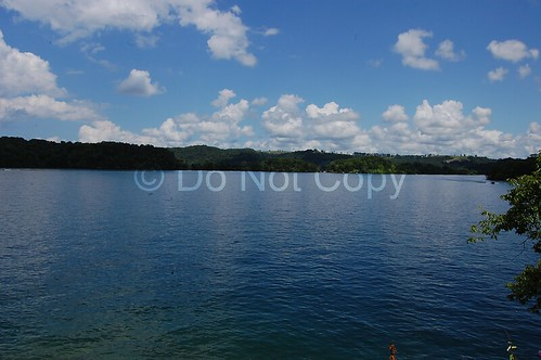 dale hollow lake watermark