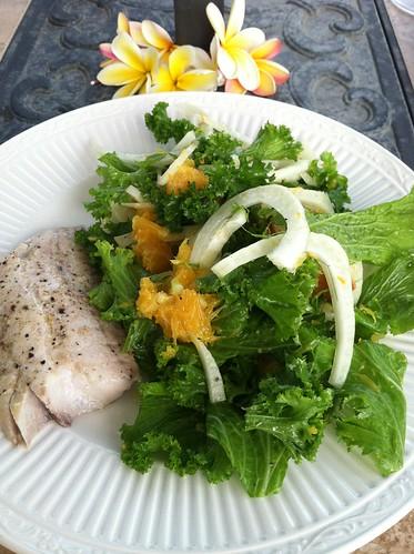 Fennel and orange salad with lemon ginger vinaigrette jessica