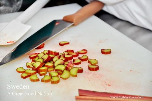 Sweeden Culinary 11