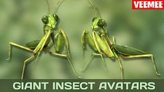 GiantInsectAvatars_Batch01_Mantis_2013-09-25_684x384