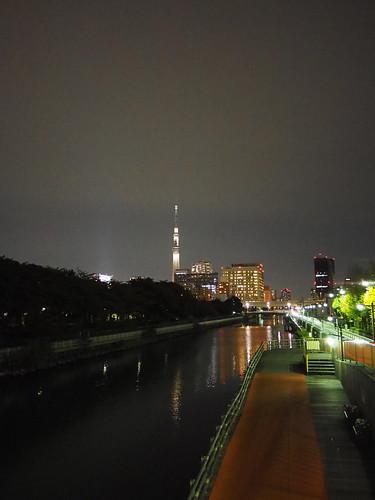 本村橋から眺める夜の東京スカイツリー