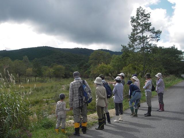 去年の工事地.湿地生の植物や生物の姿をしっかりと見学.