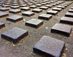FischerT-Line-squares