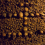 Sculls of the catacombs