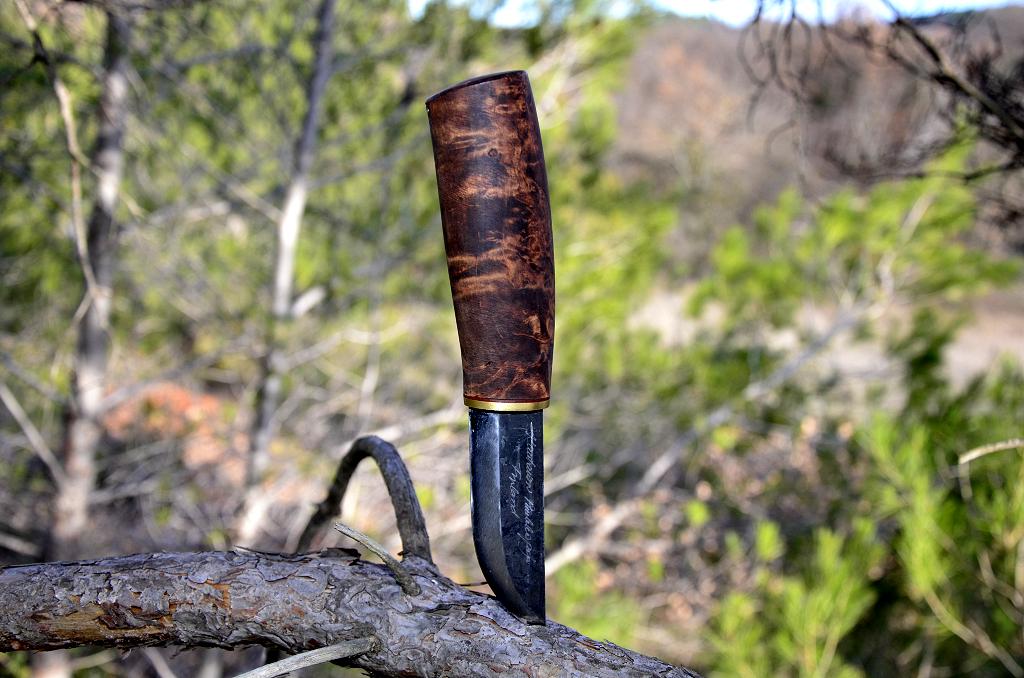 Des traces de couteaux dans les bois 12090276916_f224597827_b