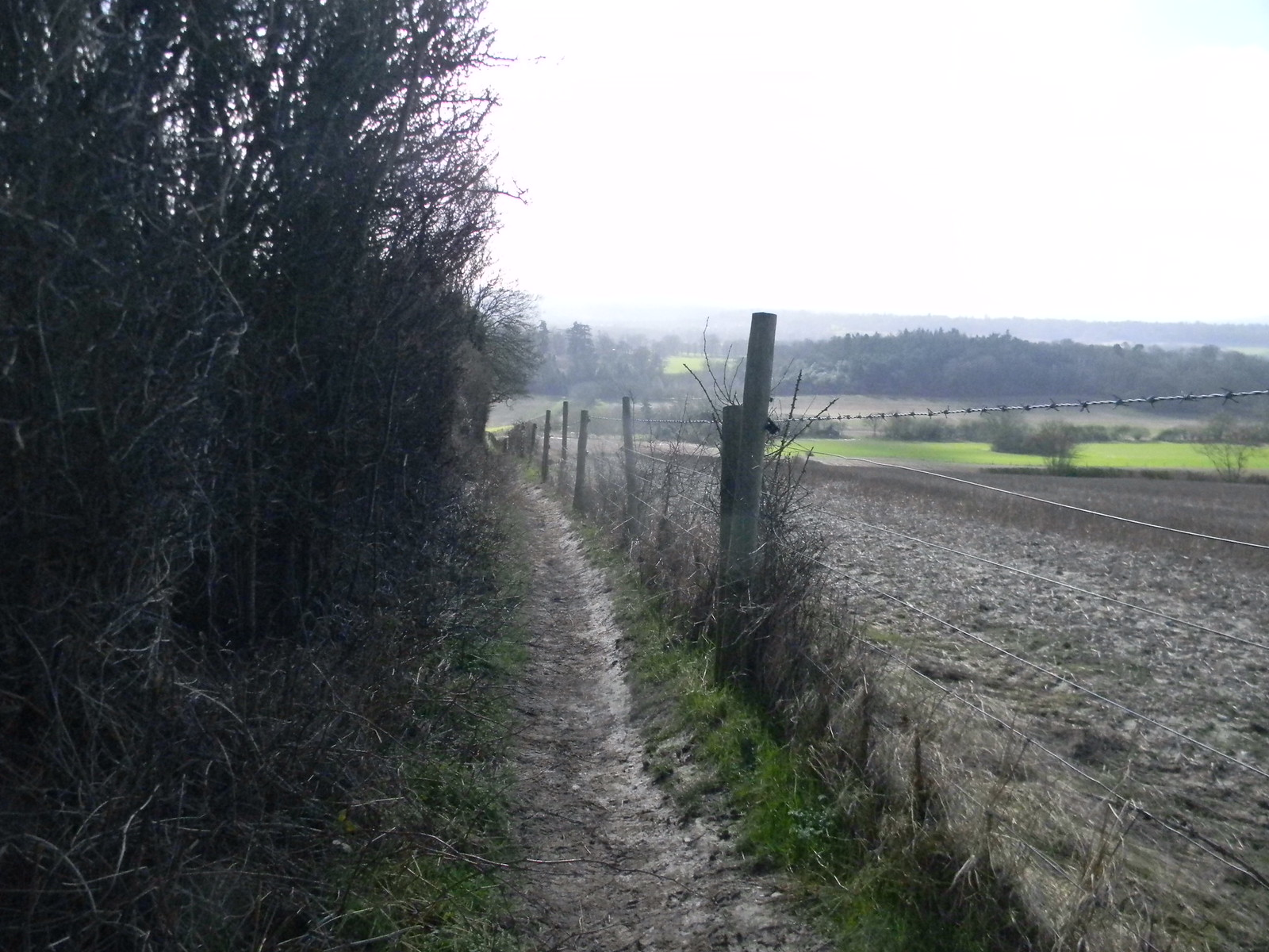 Hogsback start - descent from ridge Guildford to Farnham