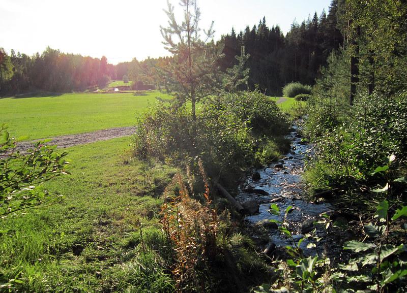 Autumn 2011