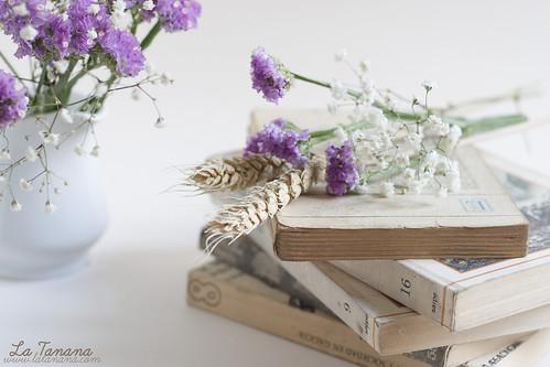 Flores_LT