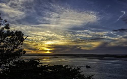california trees sunset sky color nature water silhouette night clouds bay boat morrobay morro morrobaystatepark nikond7100
