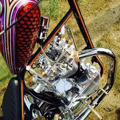 kill scum speed cult chop cult born free david mann art traditional flash tattoo motorcycle chopper bobber indian harley triumph bsa honda ironhead panhead flathead knucklehead shovelhead 9