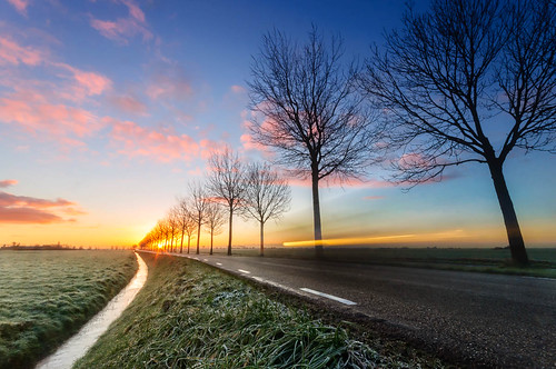 road morning travel trees winter sunset travelling cars netherlands dutch grass car fog rural sunrise countryside driving ditch transport nederland trails headlights row farmland dew rush commuting lighttrails passing commuters zuidholland passingby zoeterwoude weipoort weddepad