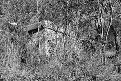 South Bridge Support at Cottonwood Creek, Allen, Texas 1411261345bw