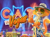 Online Cat in Vegas Slots Review
