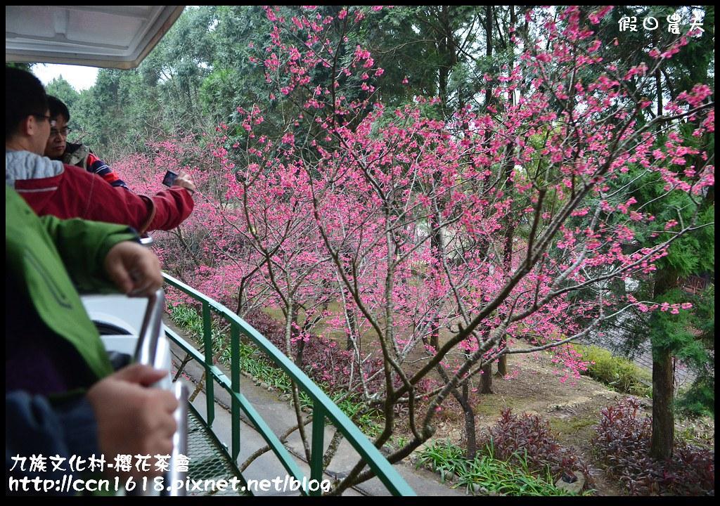 九族文化村-櫻花茶會DSC_4443