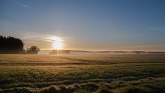 Sunrise near Poitiers