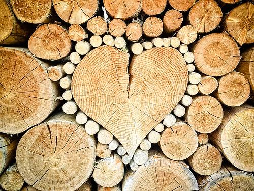 木の食器 by pixabay